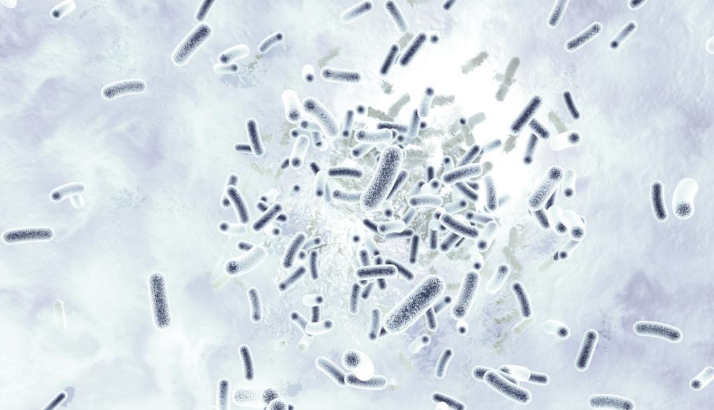 Durch den Lockdown könnte es zu mehr Legionellen-Infektionen kommen.